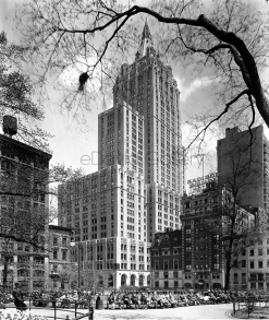 Madison Square Park, Building View